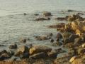 Pobřeží Korsiky